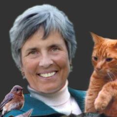 Janet Lippincott